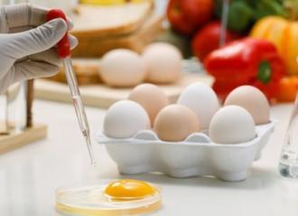 Tìm hiểu về những yêu cầu của ngành công nghệ thực phẩm