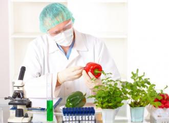 Vị trí việc làm và cơ hội xin việc ngành công nghệ thực phẩm